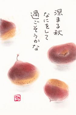 Kuri2