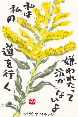 Seitakaawadatisou