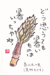 Taisannboku_mi2_3