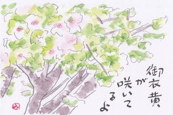 Gyoikou2