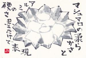 Masyumaro