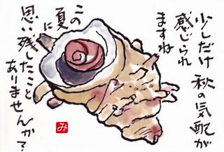 Sazae_0001_2
