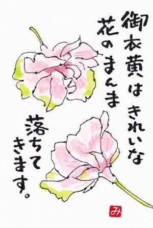 Gyoikou_1