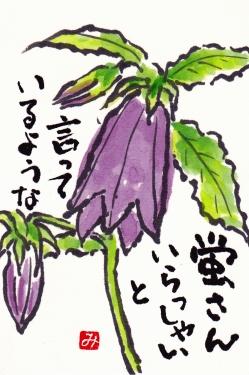 Hotarubukuro_0001